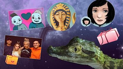 Bilder på paket, sykosn, klrokodil och Kleopatra som collage SR.Web.CssMapping.CssClass
