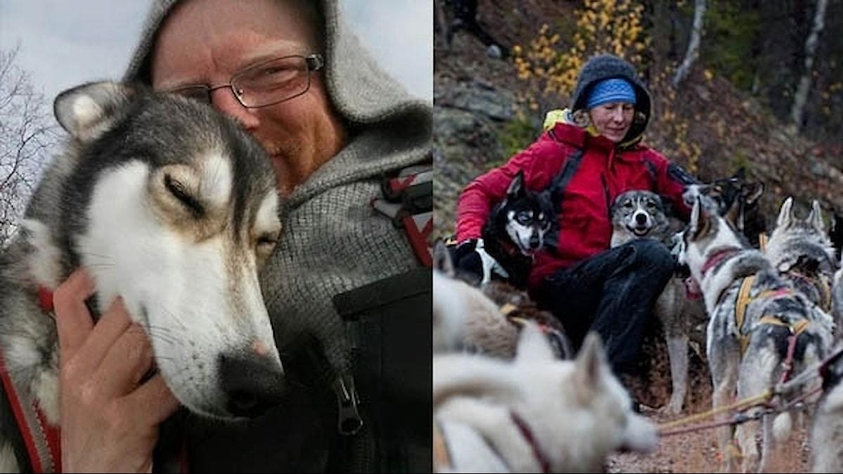 Matti&Stina fann kärleken via hundarna