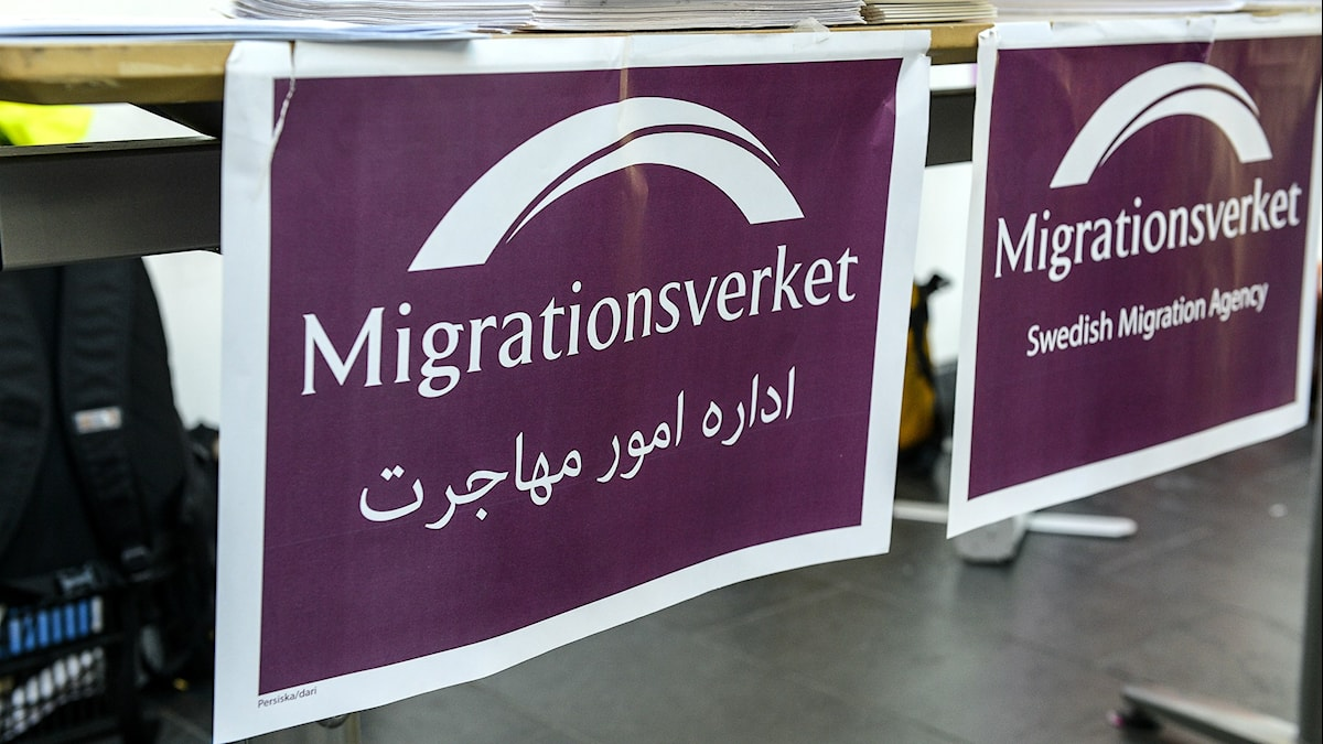 Migrationsverkets mottagningsdisk .Foto:Anders Wiklund/TT.