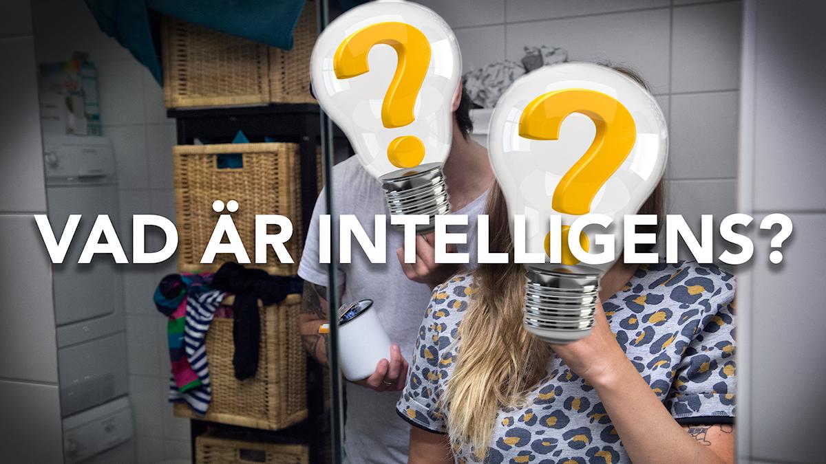 Vad är intelligens?