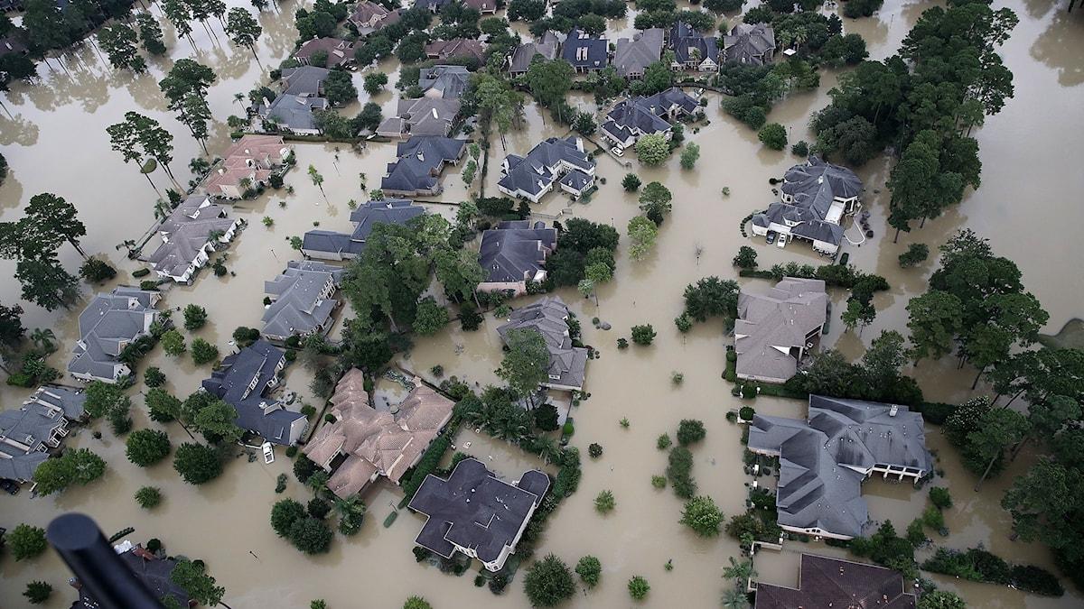 Harvey översvämmning