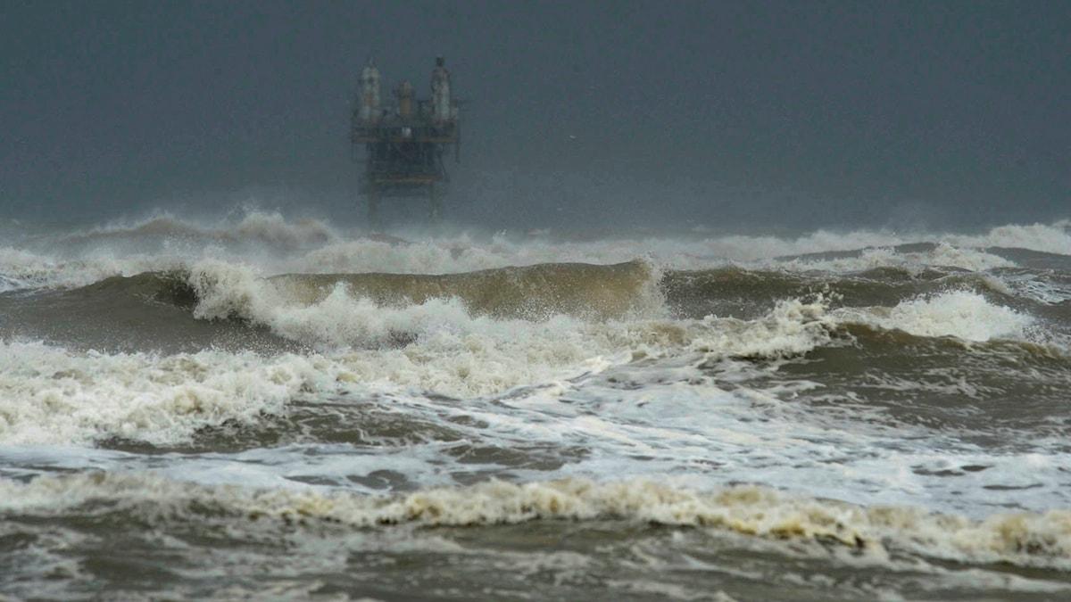 Stora vågor slår in över Crystal Beach i Texas.