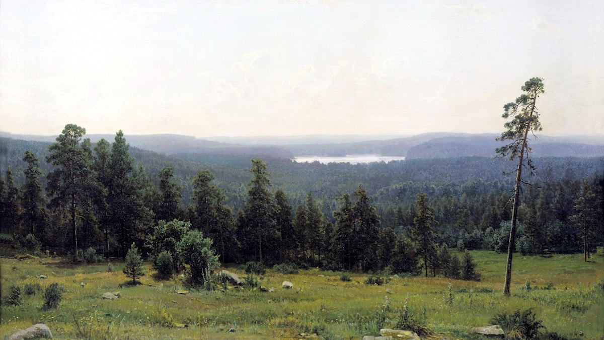 Forest Distance av Ivan Sjisjkin