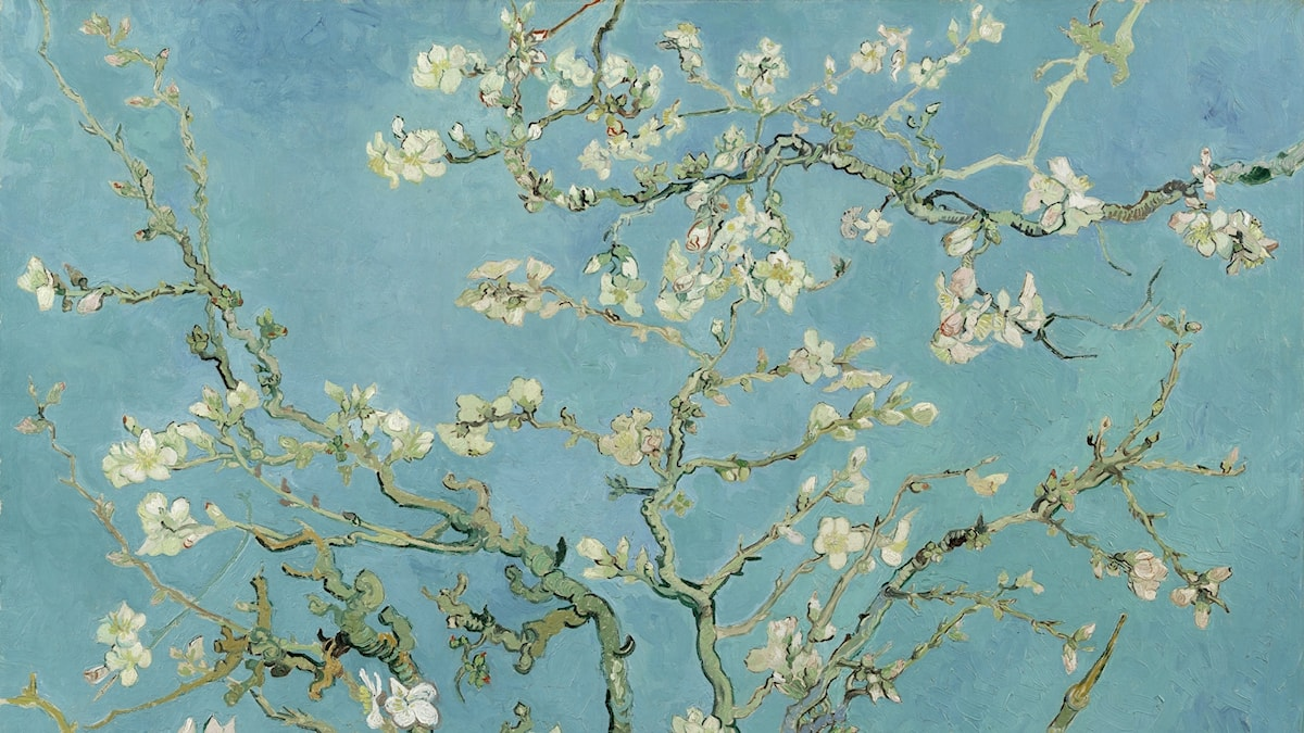 Almond Blossoms / Vincent van Gogh