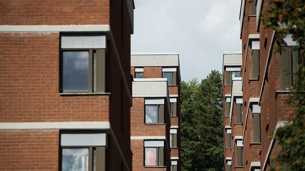 Bild på ett hus med studentbostäder i Stockholm