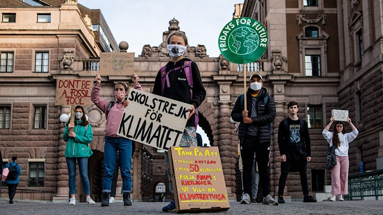 Greta Thunberg och andra unga från Fridays for future strejkar utanför Riskdagen i Stockholm.