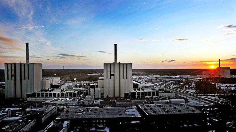 Forsmark kärnkraftverk i solnedgång. Foto: Tomas Oneborg / SvD / TT