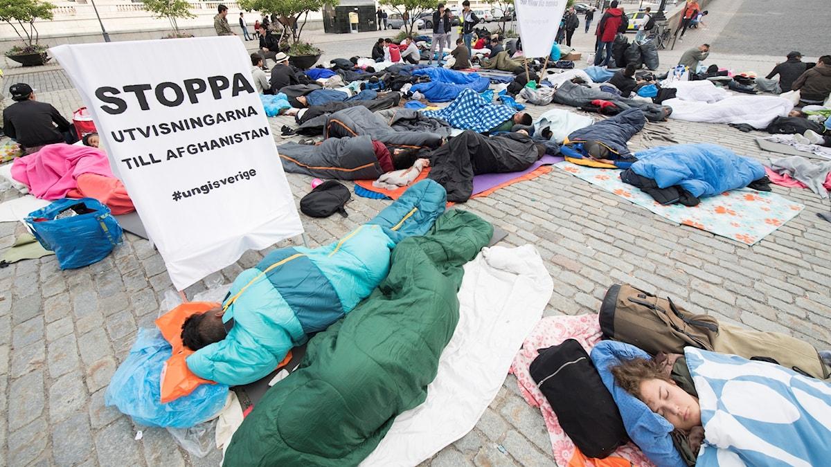 Demonstranter som ligger och sover på Mynttorget i Stockholm. Foto: Fredrik Sandberg/TT