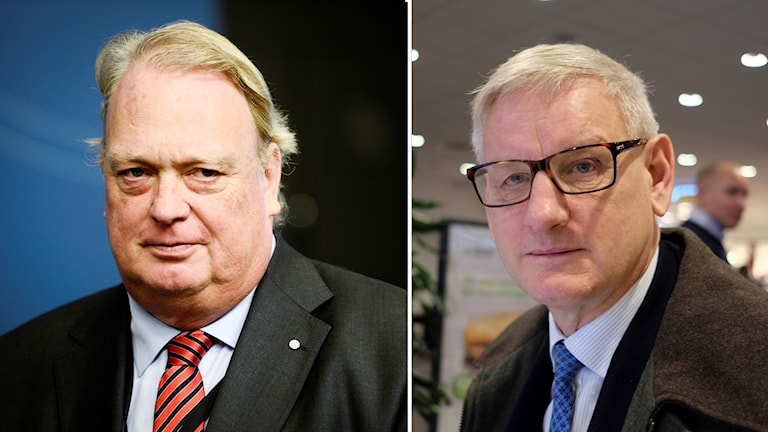 Mikael Odenberg och Carl Bildt