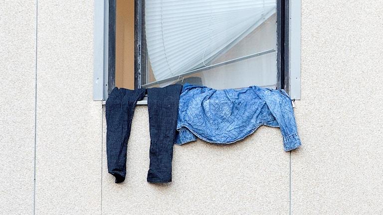 Kläder hänger på vädring utanför ett fönster. Foto: Maja Suslin/TT.