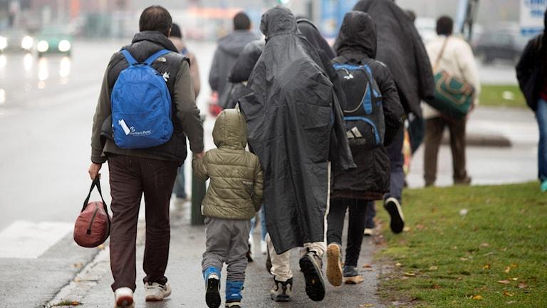 Nyanlända sylsökande i Malmö.