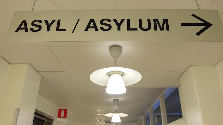 """Skylt på Migrationsverket med texten """"Asyl/asylum"""""""