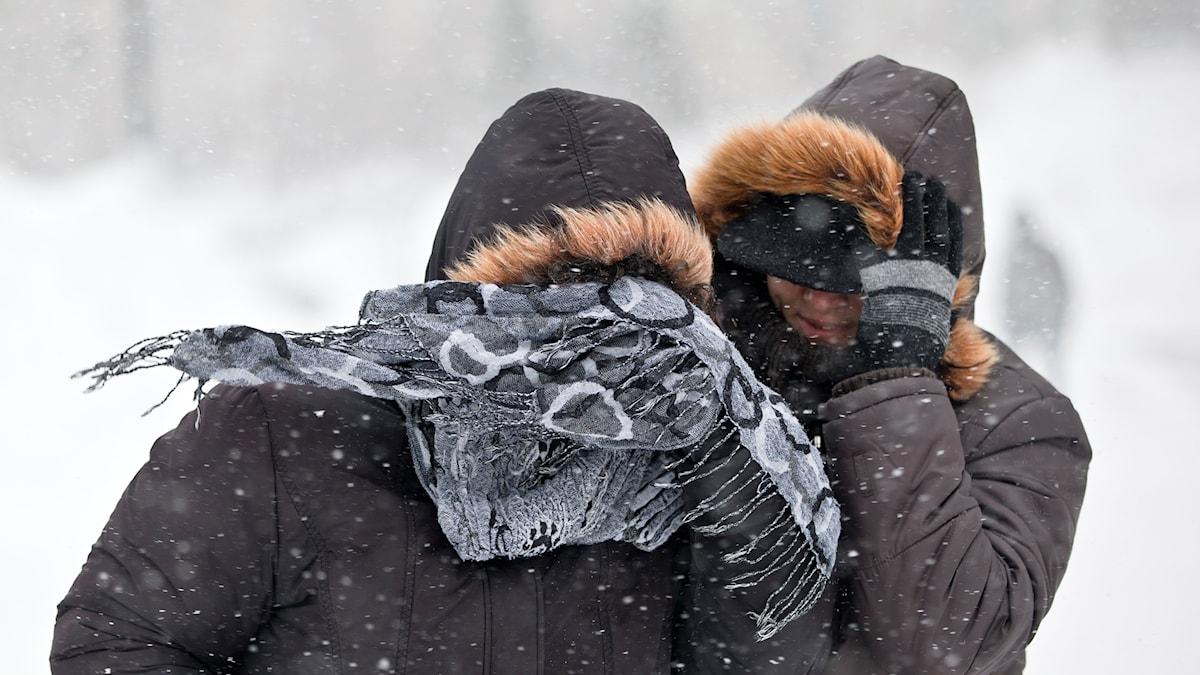 Två kvinnor går i blåsigt och snöigt väder.