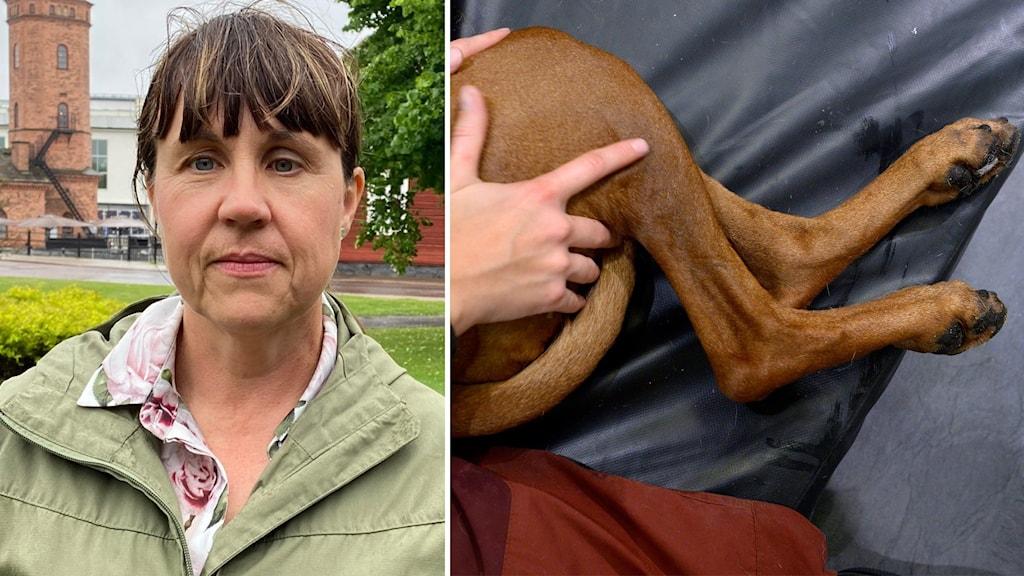 En kvinna med grön jacka och en infälld bild på hundben.