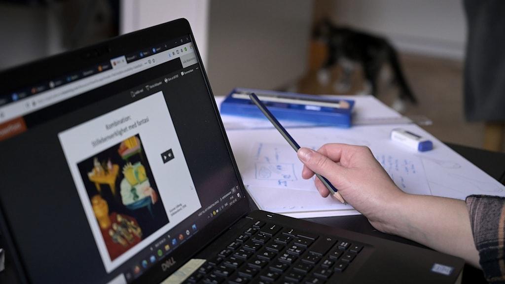 En bild på en person som sitter vid en dator och deltar i en lektion.