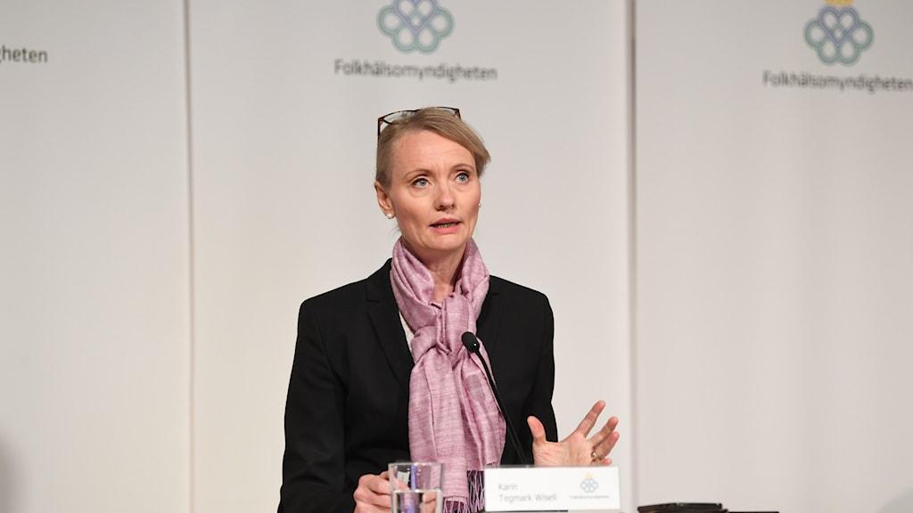 Bilden visar Karin Tegmark Wisell, avdelningschef på Folkhälsomyndigheten, på en pressträff.