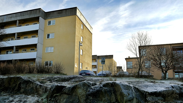 Hyreshus. Foto: Janerik Henriksson/TT