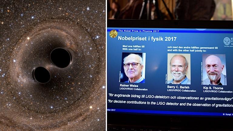 Rainer Weiss, Barry C. Barrish och Kip S. Thorne får Nobelpriset i fysik.