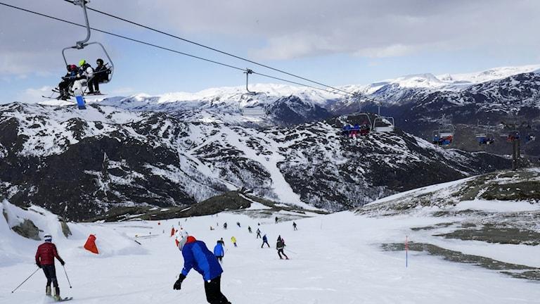 Många svenskar åker skidor på vintern.