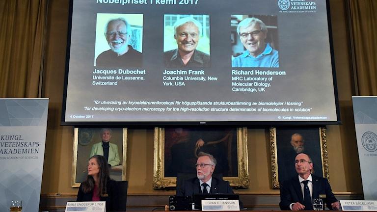 De tre forskarna presenteras. Foto: Claudio Bresciani/TT