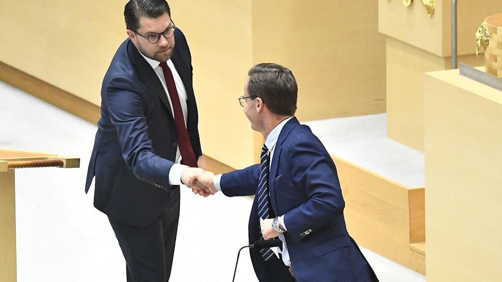 Jimmie Åkesson (SD) och Ulf Kristersson (M) i riksdagen.