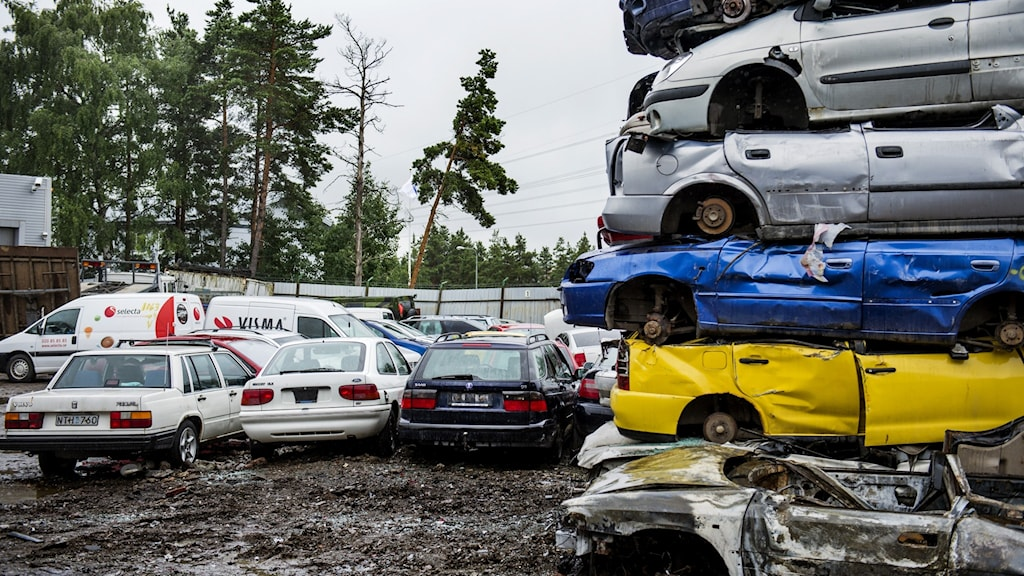 Bilar skrotas på en bildemontering.