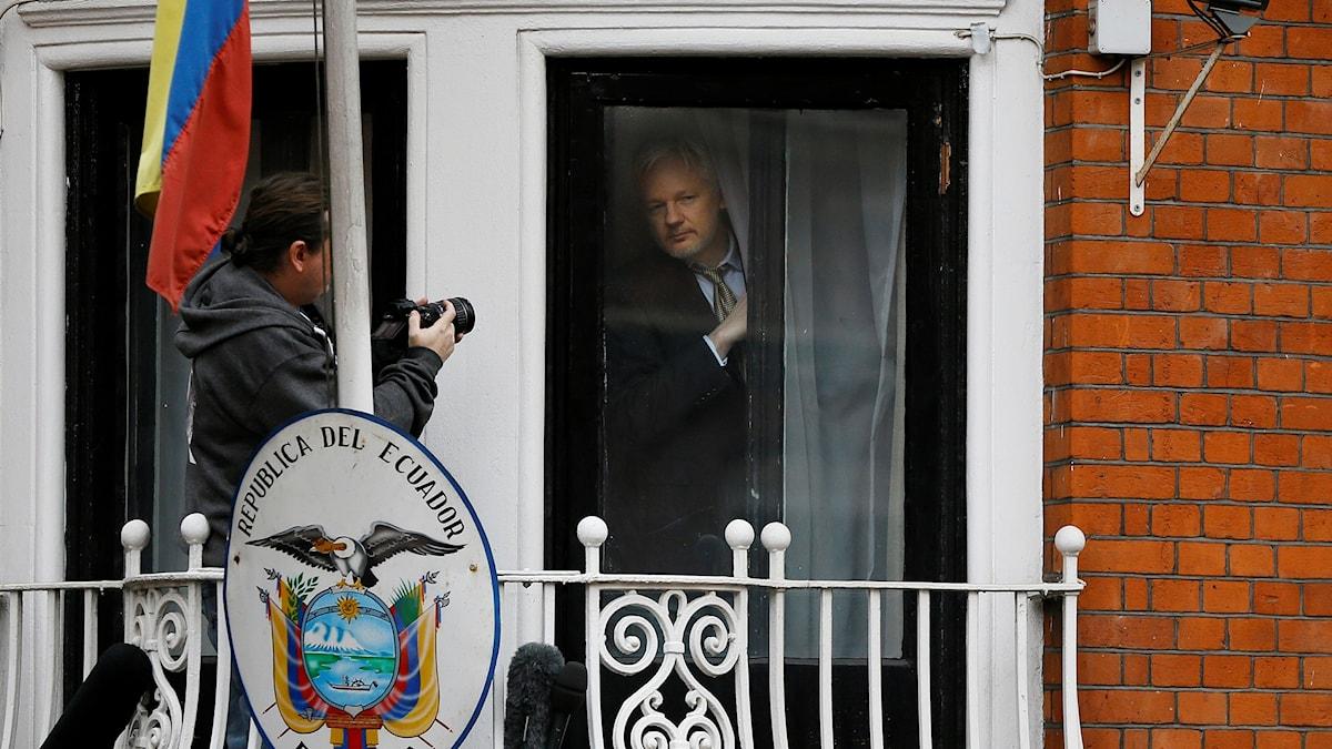 Julian Assange tittar fram bakom en gardin i fönstret till Ecuadors ambassad i London.