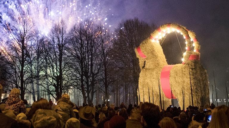 Den traditionella julboken i Gävle invigdes med bland annat fyrverkerier.