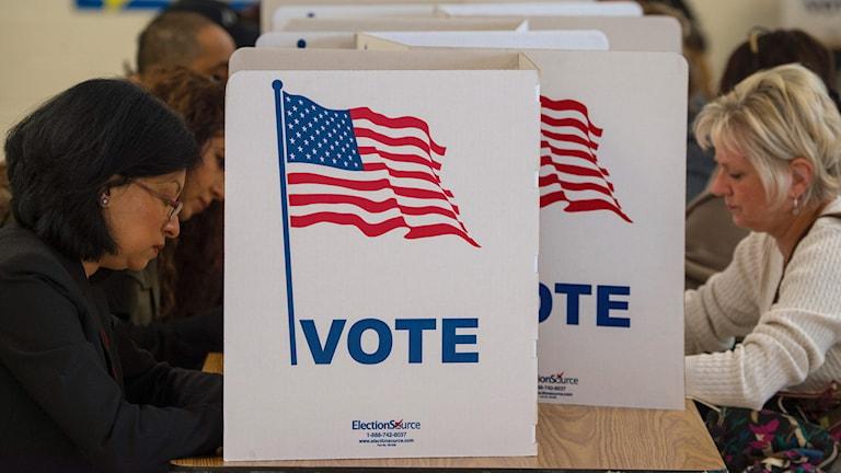 människor i röstbås i USA Foto: PAUL J. RICHARDS/TT