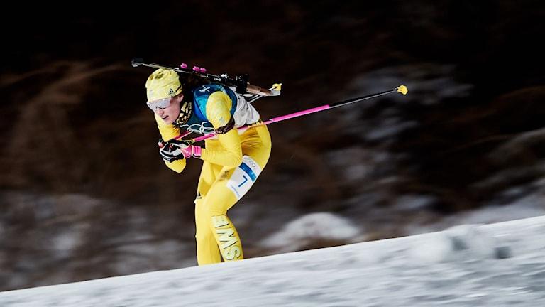 Hanna Öberg åker skidor med ett gevär på ryggen. Foto: Andreas Hillergren/TT