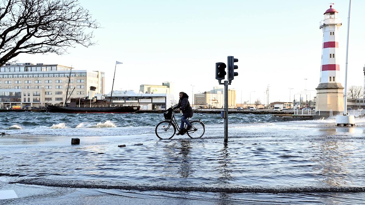 En person cyklar i vatten. Foto: Johan Nilsson