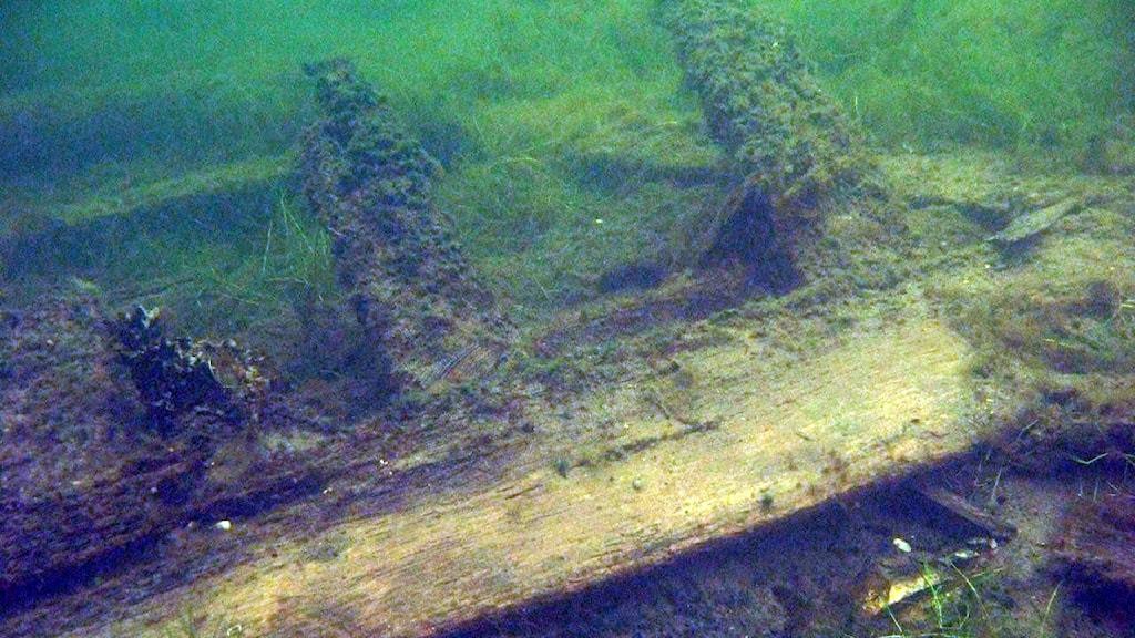 Ett vrak från ett skepp från 1600-talet, som hittats i Östersjön.