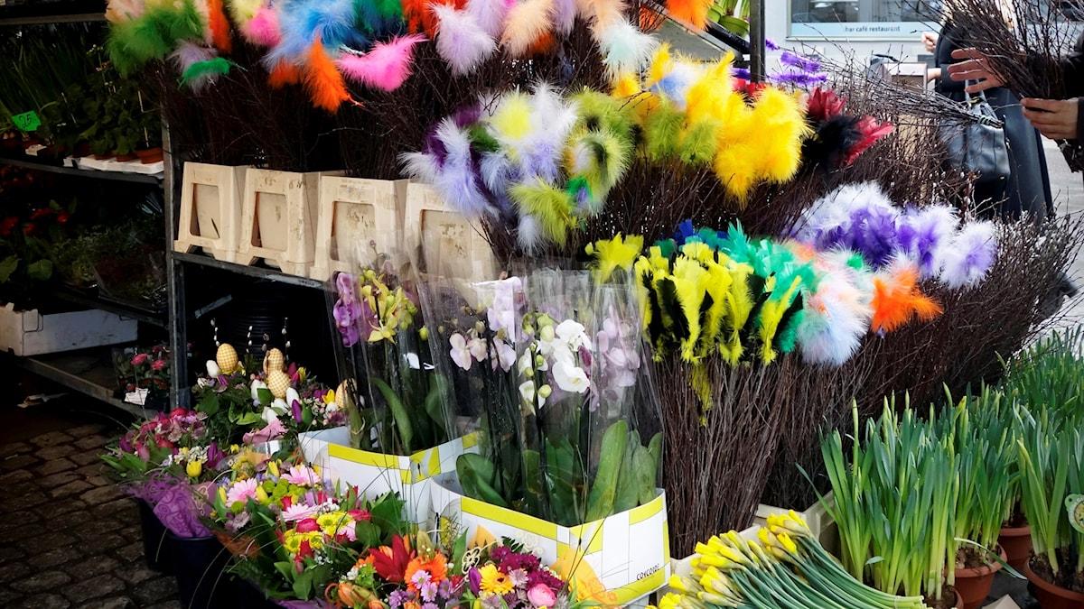 Påskris och blommor i torghandel.