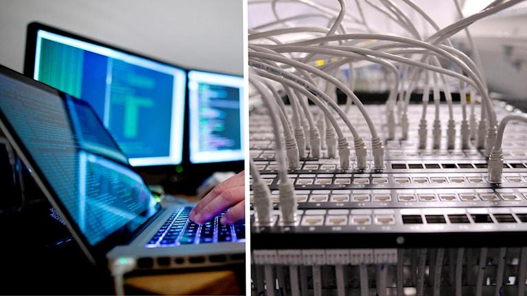 Två bilder: datorskärmar och sladdar i en internetserver.