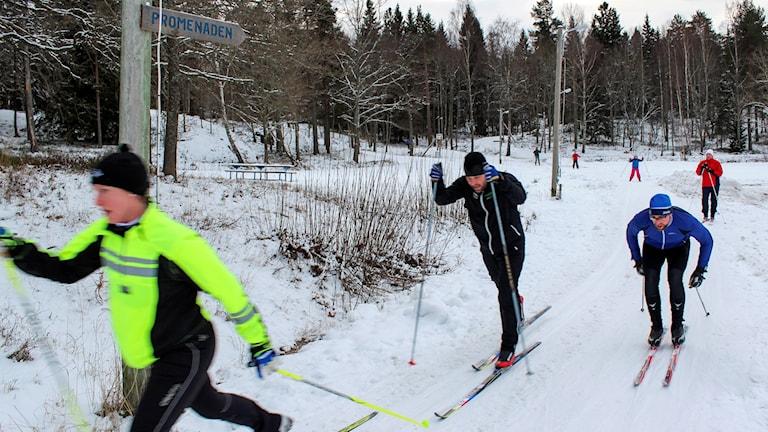 Längdskidor är väldigt populärt i Sverige.