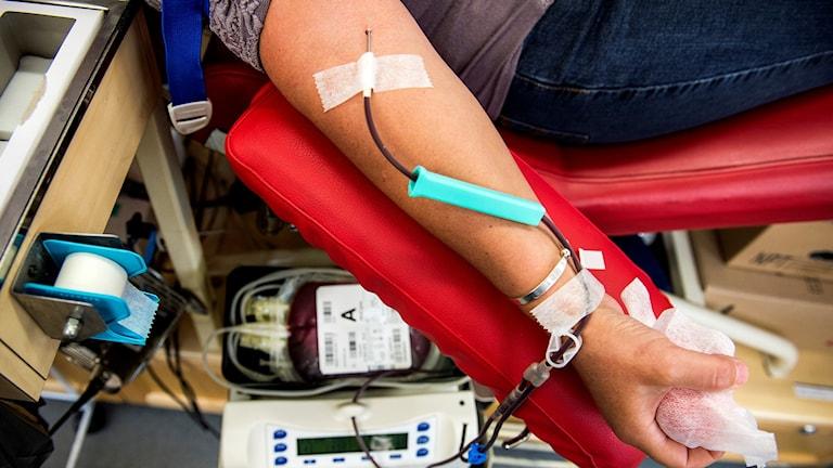 En kvinna lämnar blod.