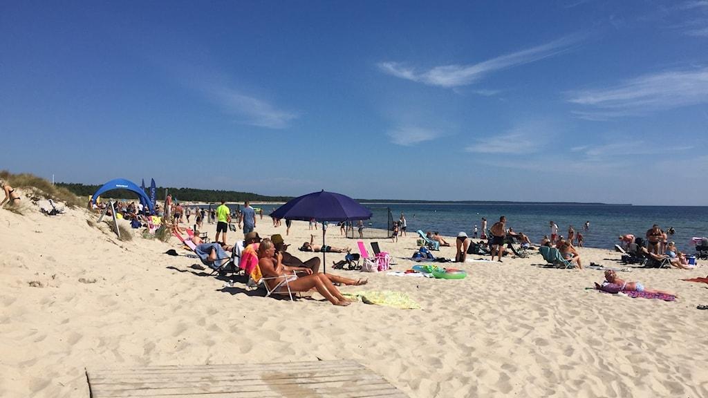 Strand med badgäster.