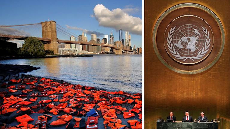 Flytvästar som flyktingar har använt ligger på en strand i New York. Till höger en bild från FN:s generalförsamling.