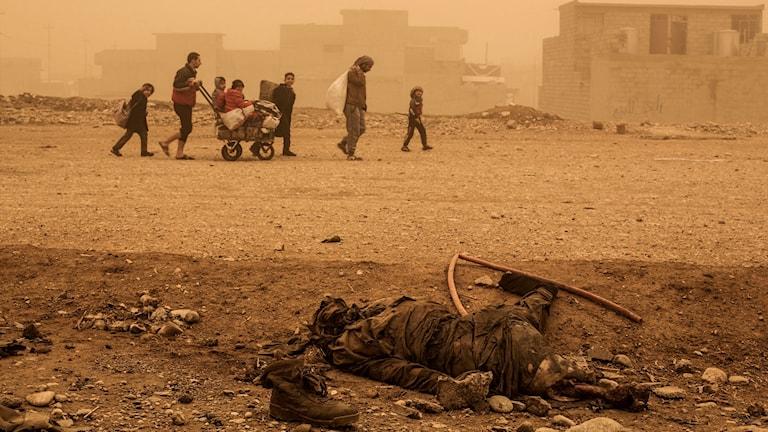 Människor som flyr från terrorgruppen iS i den irakiska staden Mosul.