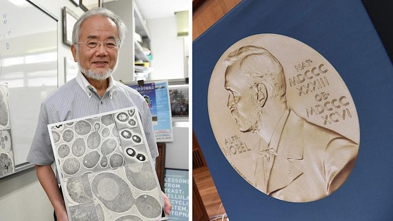 Japanen Yoshinori Ihsumi och en bild på en Nobelmedalj.