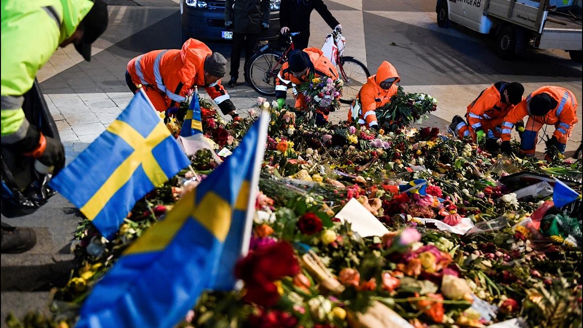 trafikkontoret rensar upp och flytta det blomhav som bildats på trappan vid Sergels Torg efter terrordådet på Drottninggatan för 10 dagar sedan.