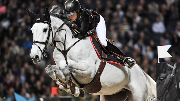 Häst som hoppar över hinder. Foto: Pontus Lundahl/TT