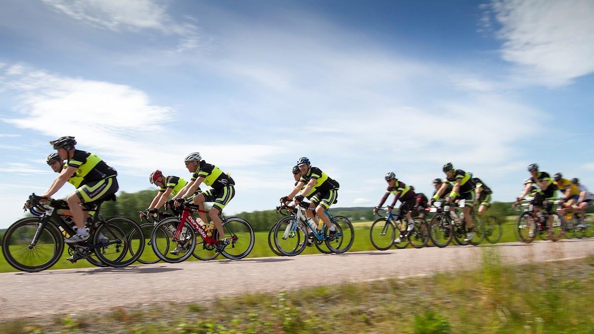 Cyklister i Vätternrundan, cyklar på en landsväg med blå himmel och sol.