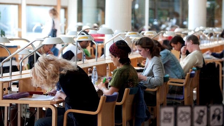 Studenter studerar i biblioteket på Stockholms universitet.