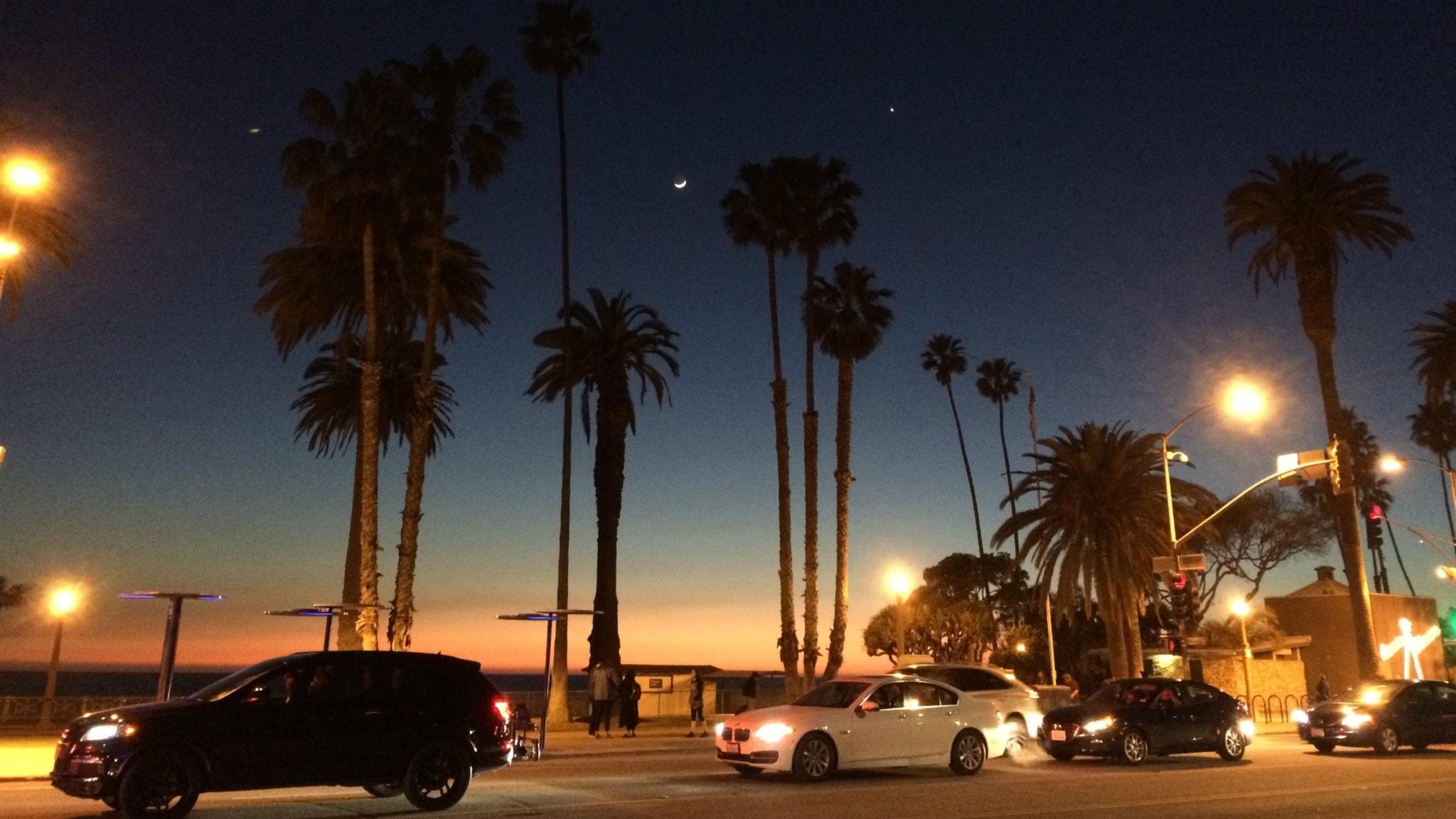 Bilar och palmer i Los Angeles.