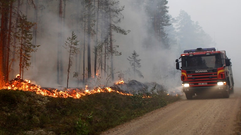 På fotot ser man en brinnande skog och en brandbil.