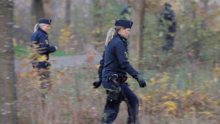 På fotot syns några poliser leta i skogen. Polsen närmast kameran är en kvinna med långt blont hår.