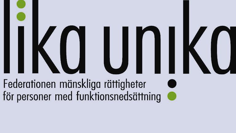 """""""Lika Unika Federationen mänskliga rättigheter för personer med funktionsnedsättning"""" står det på bilden."""