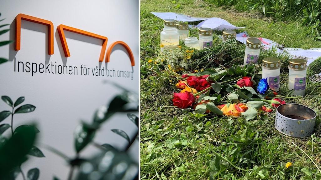 Ivos skylt och flera ljus och blommor i gräset vid ån där pojken hittades död.