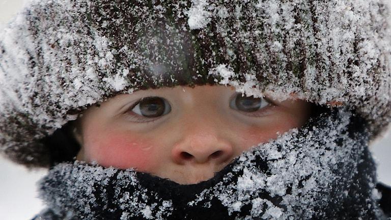 Ett barn med mycket kläder. Det är snö på både mössan och kragen.